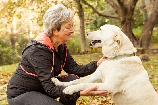 Pet Therapy COMPLEMENTARY THERAPIES | My Delta Care