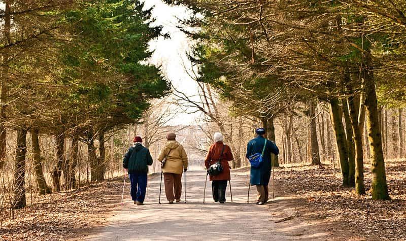 Where to Go Walking in Victoria Walking Groups in Victoria   Delta Care